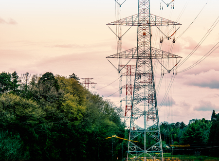 High voltage tower transmission Through the forest Imagens