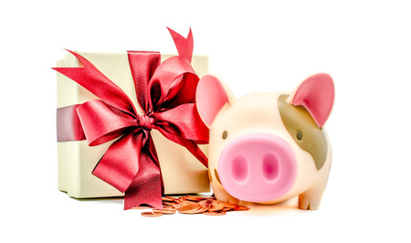 Piggy bank with coins and gift box on white background : Concept for money and financial management