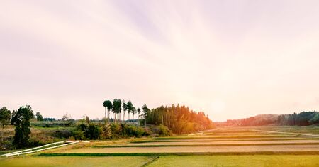 Japanese countryside with rice field in the morning with beautiful sunrise