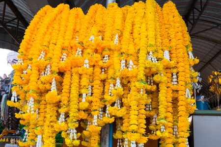marigold: Marigold garlands stacked into large pieces .