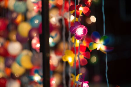 Flower Lamp to shine at night .