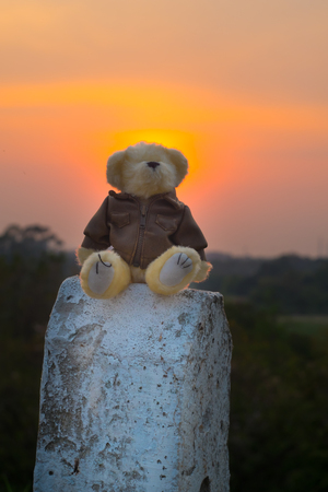 Euphoria Teddy bear sits on a barrier in the road in the sunset light .