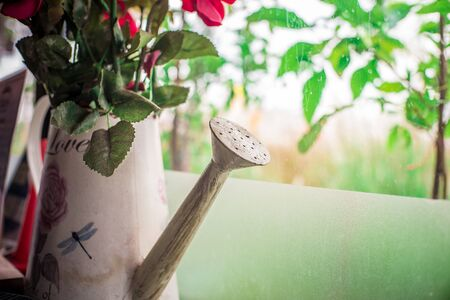 watering pot: antique watering pot make A vase of flowers for decoration.