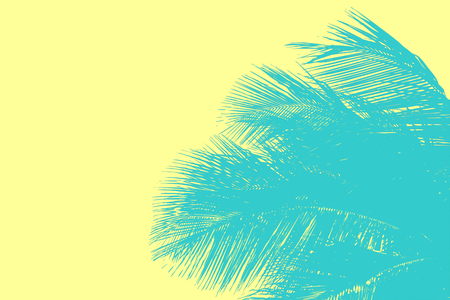 Hello summer floral with tropical leaves Concept. coconut palm leaves background, can be used for display or enter text and montage anything your .