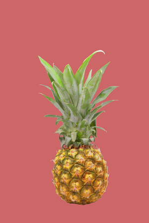 Pineapple isolated on Pink background