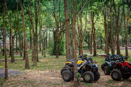 ATV 4x4 Extreme rider get ready to Journey through the jungle with Off-road atv car Zdjęcie Seryjne