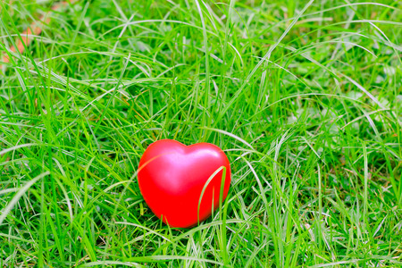 neglect: red heart shape on grass, abstract background metaphor to lonely love or neglect the act of being uncared for. for Valentines day season concept.