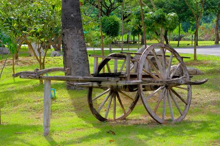 bullock: bullock cart in the garden