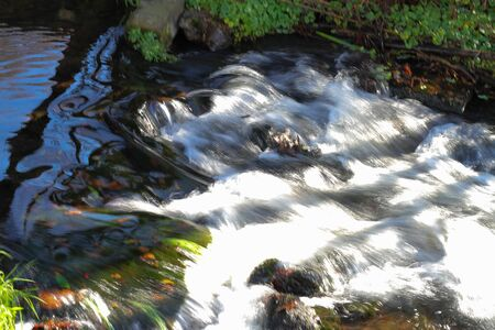 salmon migration: streams and small waterfalls along the way.JAPAN