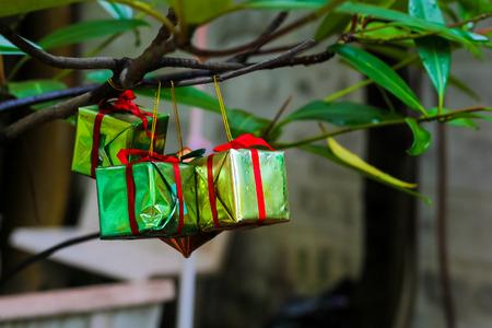 Gift box hanging on tree Stock Photo