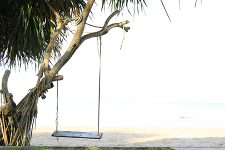 wooden swing chair hanging on tree near beach, Thailand. Stock fotó