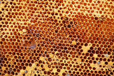 Old honeycomb texture pattern background