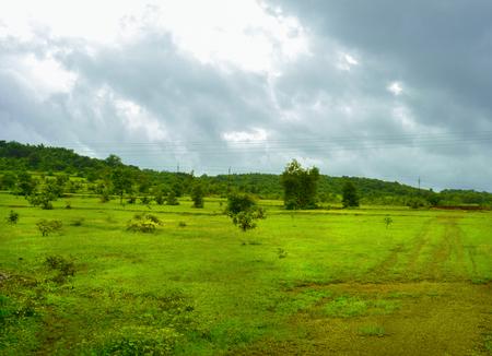 Village Greennary  Goa Stock Photo