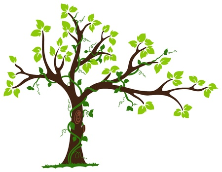 This is an illustration of love tree with hearts surrounded by vine around its branches  This is a RGB color mode vector Illustration file created in Adobe Illustrator  Illustration