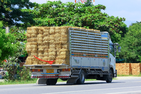 CHIANGMAI, THAILAND - OCTOBER 3 2014: Truck of Animal food (Grass). Photo at road no.121 about 8 km from downtown Chiangmai, thailand.