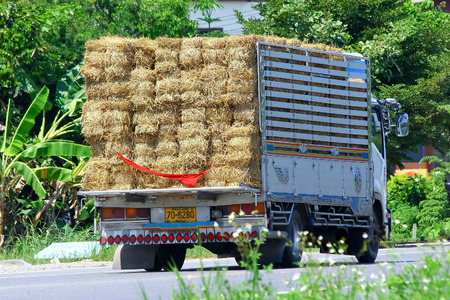 CHIANGMAI, THAILAND - OCTOBER 3 2014: Sb Furniture mini truck. Photo at road no 121 about 8 km from downtown Chiangmai, thailand.CHIANGMAI, THAILAND - OCTOBER 3 2014: Truck of Animal food (Grass). Photo at road no.121 about 8 km from downtown Chiangmai, t
