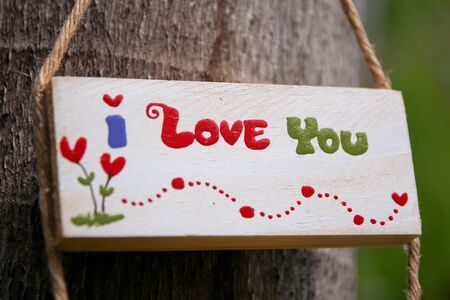 i love u: Word i Love u on white wood baord with Palm tree background