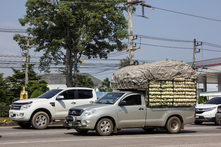 Chiangmai, Thailand - October 5 2018: Private Toyota Hilux Vigo  Pickup Truck.  On road no.1001 8 km from Chiangmai city. Editorial