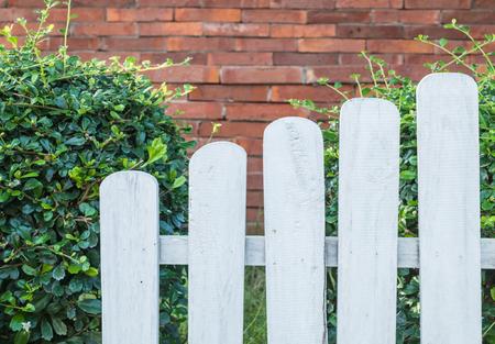 White fence in garden background