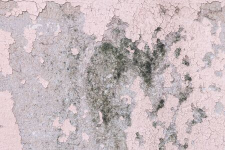 lurid: Closeup pale color and peeling of painted pink cement wall texture background