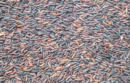 nutrientes: Primer plano de la pila de arroz negro llamado arroz riceberry, el arroz con el fondo texturizado altos nutrientes