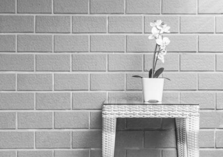 orchid house: Closeup artificial plant with white orchid flower on flower pot on wood weave table on blurred brick wall texture background , beautiful interior in relaxation concept of house in black and white tone