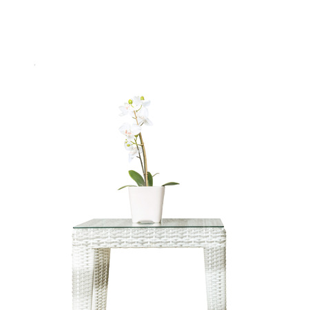 orchid house: Closeup artificial plant with white orchid flower on pink flower pot on wood weave table isolated on white background , beautiful interior in relaxation concept of house