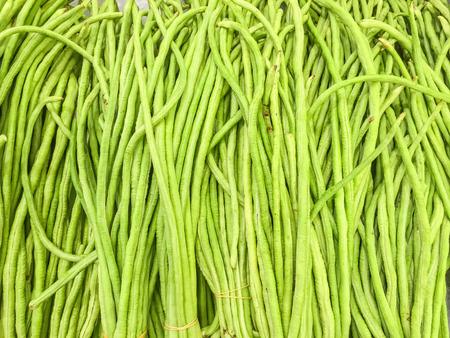 long bean: Closeup pile of fresh green yard long bean textured background