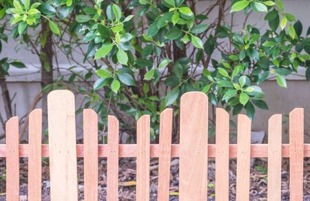 palisade: Closeup wooden fence in garden background Stock Photo