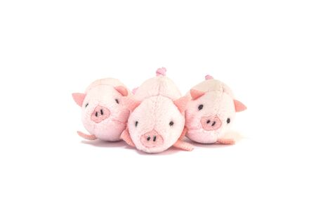 Closeup three little pink pig doll isolated on white background