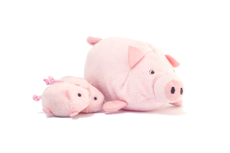 Closeup cute pink pig doll with little pig isolated on white background Stock Photo