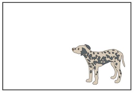 Dalmatian Puppy  Illustration