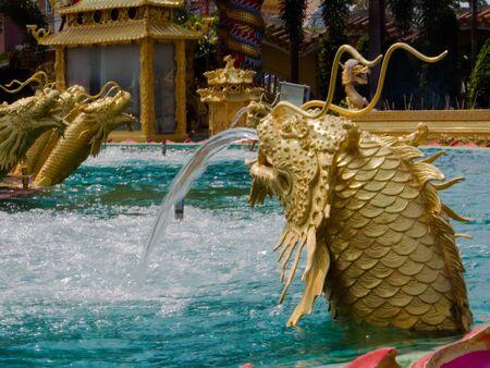 loch: Sea Dragon in the pool