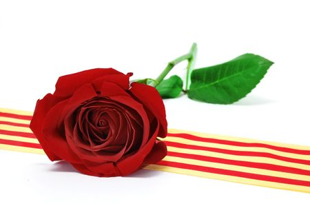 rose's day catalonian tradition Stock Photo - 5115198