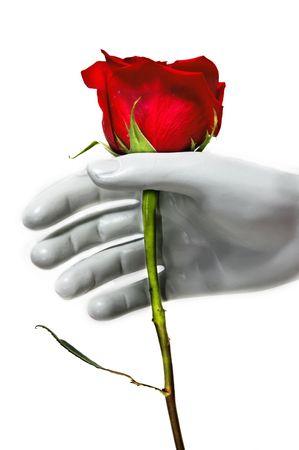 arose: give a rose