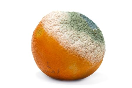 rotten: rotten orange