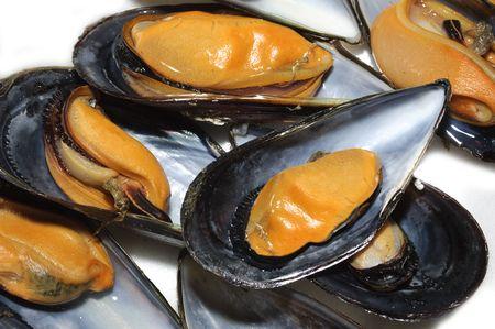 marine crustaceans: mussels Stock Photo