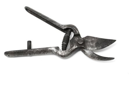 pruning shears: pruning shears Stock Photo