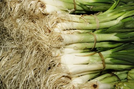 calsots:  calçots, BBQ onions typical Catalan food in spain Stock Photo