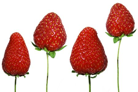 a isolated strawberry on a white background photo