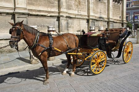 sevilla: a carriage in front of Sevilla Cathedral