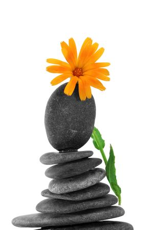 inukshuk: zen stones and flower on a white background