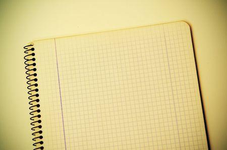 foglio a righe: alzato di un notebook a spirale di quadrille governato carta