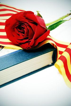 catalunya: a red rose with the senyera and a book, a catalan tradition for the roses day