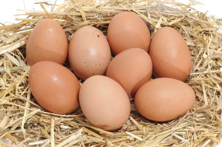 boiled eggs: a closeup of a pile of brown eggs in a straw nest