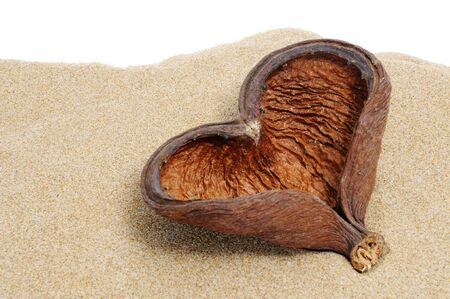 a heart-shaped shell with over the sand on white background photo