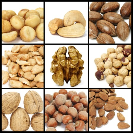 pecan: a collage of nine pictures of different nuts