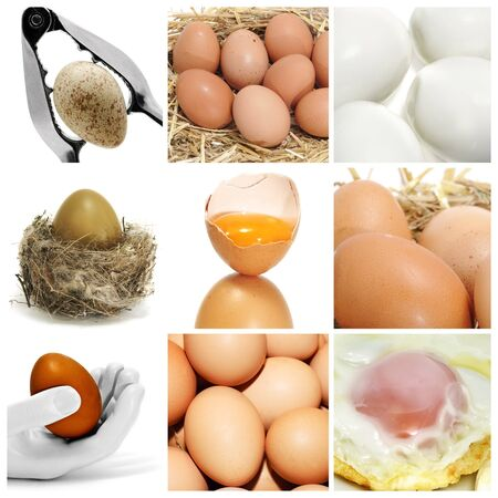 a collage of nine pictures of different eggs Stock Photo - 6952873