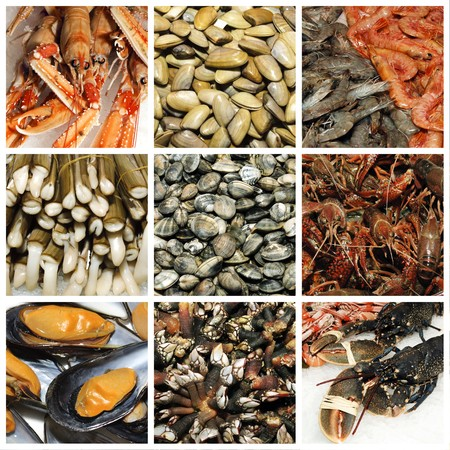clam: a collage of nine pictures of different seafood Stock Photo