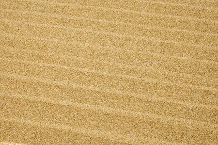 background made of a closeup of sand of a beach Stock Photo - 7242397